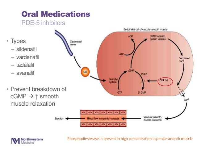 Oral Sildenafil in the Treatment of Erectile Dysfunction