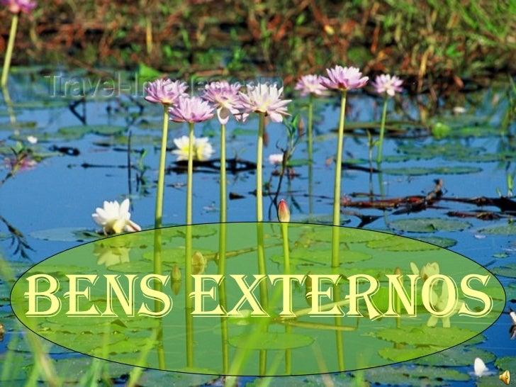 <ul><li>BENS EXTERNOS </li></ul>