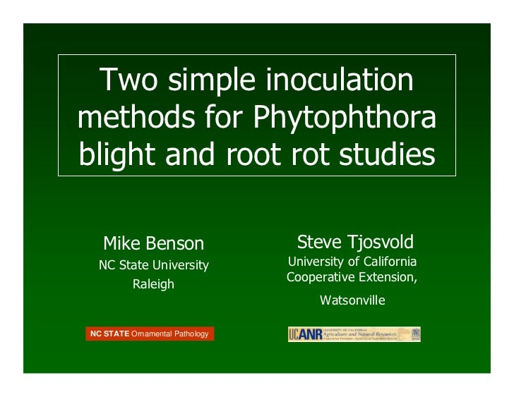 Two simple inoculation methods for Phytophthora blight and root rot studies      Mike Benson                   Steve Tjosv...