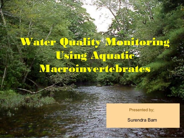 Water Quality Monitoring     Using Aquatic  Macroinvertebrates                 Presented by;                 Surendra Bam