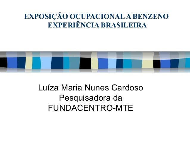 EXPOSIÇÃO OCUPACIONALA BENZENO EXPERIÊNCIA BRASILEIRA Luíza Maria Nunes Cardoso Pesquisadora da FUNDACENTRO-MTE