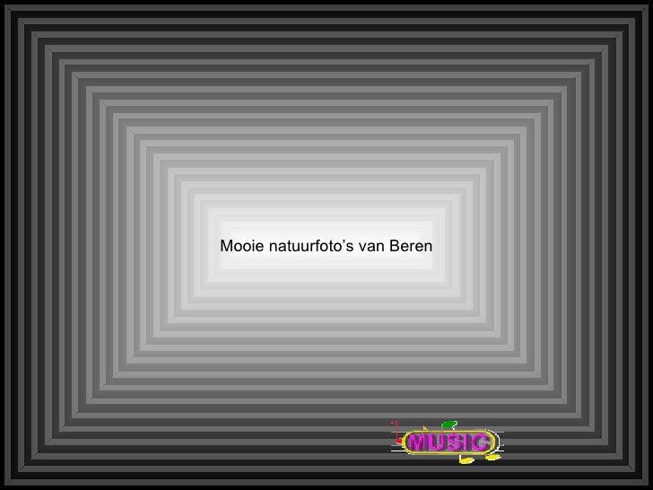 Mooie natuurfoto's van Beren