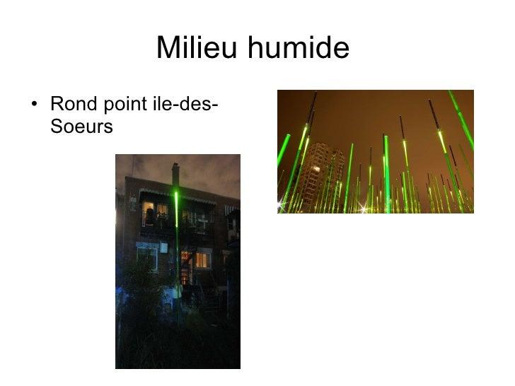 Milieu humide  <ul><li>Rond point ile-des-Soeurs </li></ul>