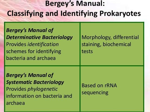 bergey s manual of bacterial classification rh slideshare net bergey's manual of determinative bacteriology 9th edition bergey's manual of determinative bacteriology 9th edition citation