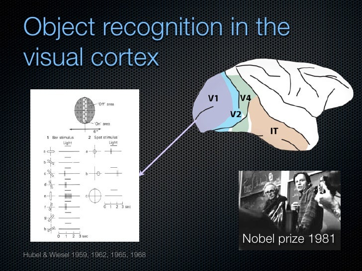 object recognition and visual perception essay This paper focusses on the debate about the cognitive architecture  intuitive  concepts of visual perception and cognition  the claim that object recognition  and emotion recognition essentially involve the same processes,.