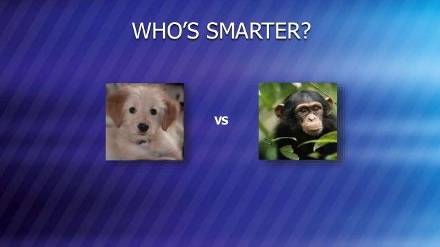 © COPYRIGHT 2013 MARKLOGIC CORPORATION. ALL RIGHTS RESERVED.SLIDE: 21 WHO'S SMARTER? VS