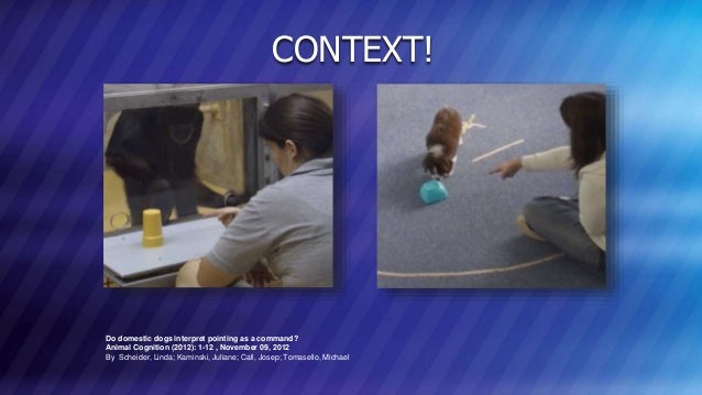 © COPYRIGHT 2013 MARKLOGIC CORPORATION. ALL RIGHTS RESERVED.SLIDE: 22 Do domestic dogs interpret pointing as a command? An...