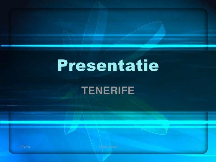 Presentatie<br />TENERIFE<br />1 TRM b<br />1<br />BerndAmeel<br />