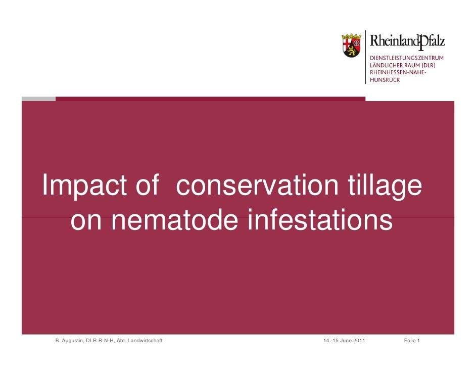 Impact of conservation tillage  on nematode infestations B. Augustin, DLR R-N-H, Abt. Landwirtschaft   14.-15 June 2011   ...