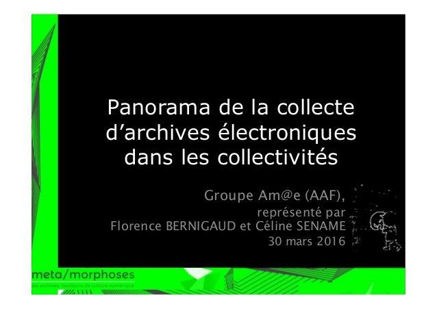 Panorama de la collecte d'archives électroniques dans les collectivités Groupe Am@e (AAF), représenté par Florence BERNIGA...