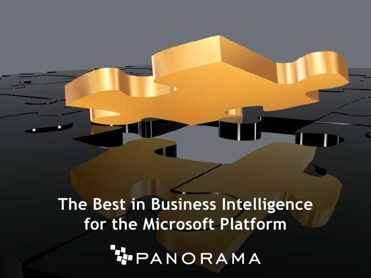 The Best in Business Intelligence <br />for the Microsoft Platform<br />