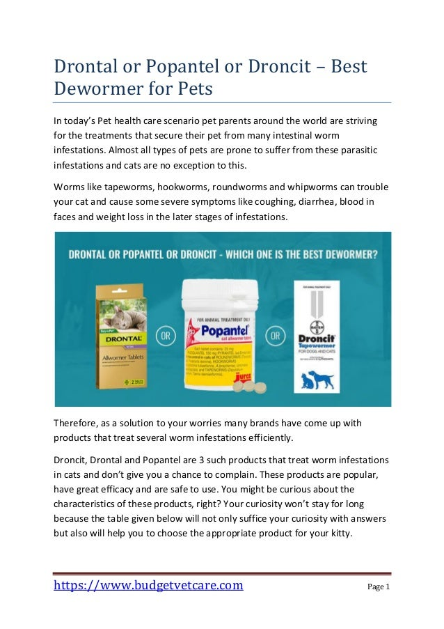 Drontal or Popantel or Droncit – Best Dewormer for Pets