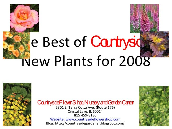 The Best of  Countryside's  New Plants for 2008 Countryside Flower Shop, Nursery and Garden Center 5301 E. Terra Cotta Ave...