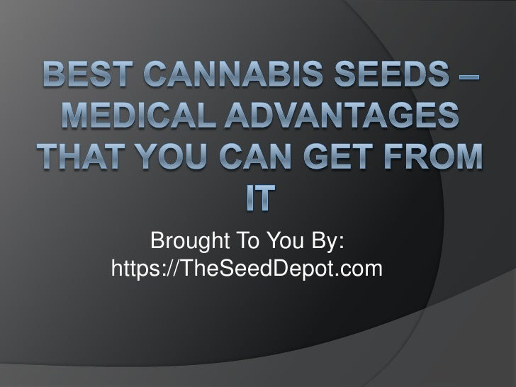 Best Cannabis Seeds – Medical Advantages That You Can Get From It<br />Brought To You By:<br />https://TheSeedDepot.com<br />