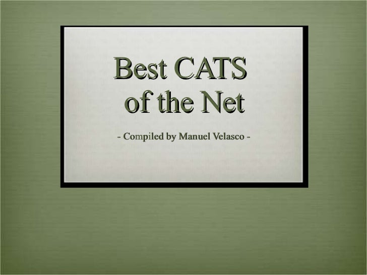 Best CATS  of the Net - Compiled by Manuel Velasco -