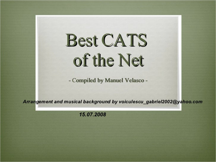 Best CATS  of the Net - Compiled by Manuel Velasco - Arrangement and musical background by voiculescu_gabriel2002@yahoo.co...