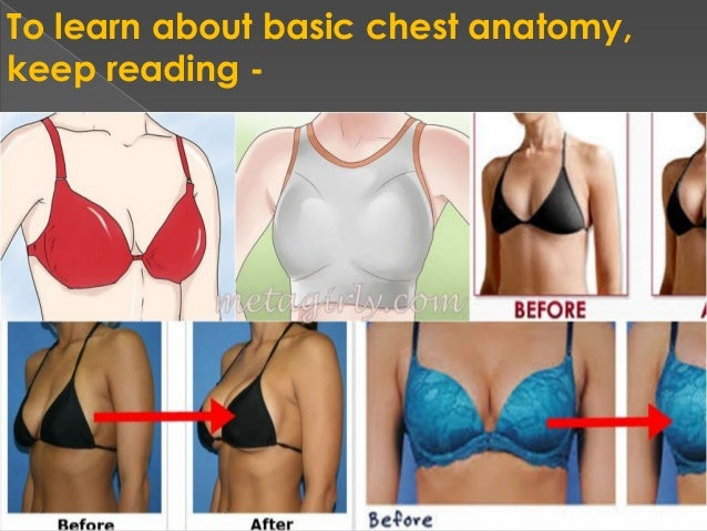 To Learn About Basic Chest Anatomy Keep Reading