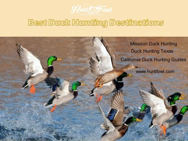 Huntfowl Missouri Duck Hunting Duck Hunting Texas California Duck Hunting Guides www.huntfowl.com