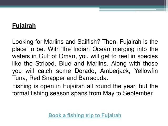Best fishing season in UAE