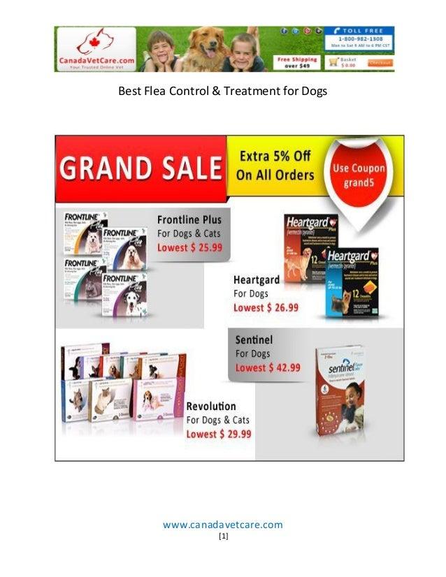 Best Flea Control & Treatment for Dogs        www.canadavetcare.com                  [1]