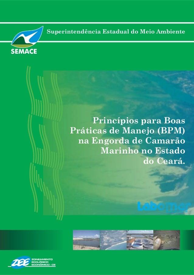 Superintendência Estadual do Meio Ambiente Princípios para Boas Práticas de Manejo (BPM) na Engorda de Camarão Marinho no ...