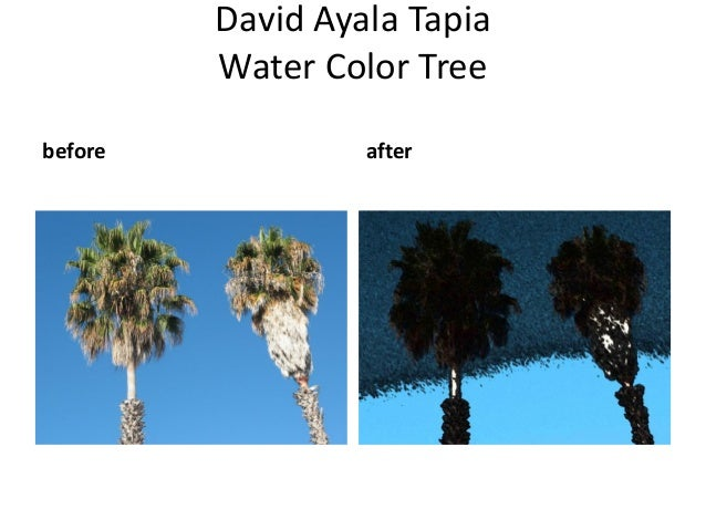 David Ayala Tapia         Water Color Treebefore            after