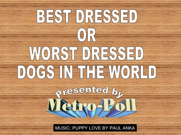 BEST DRESSED OR WORST DRESSED DOGS IN THE WORLD Presented by MUSIC; PUPPY LOVE BY PAUL ANKA