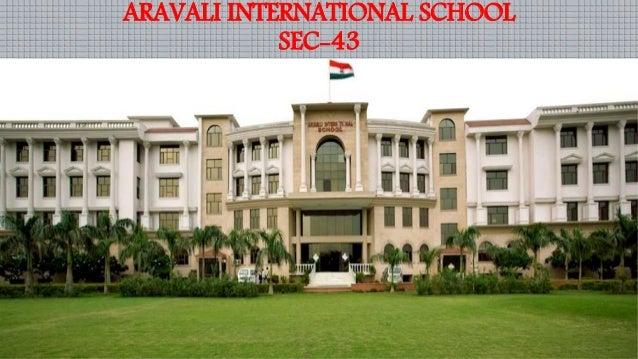 holiday homework for class 8 aravali international school