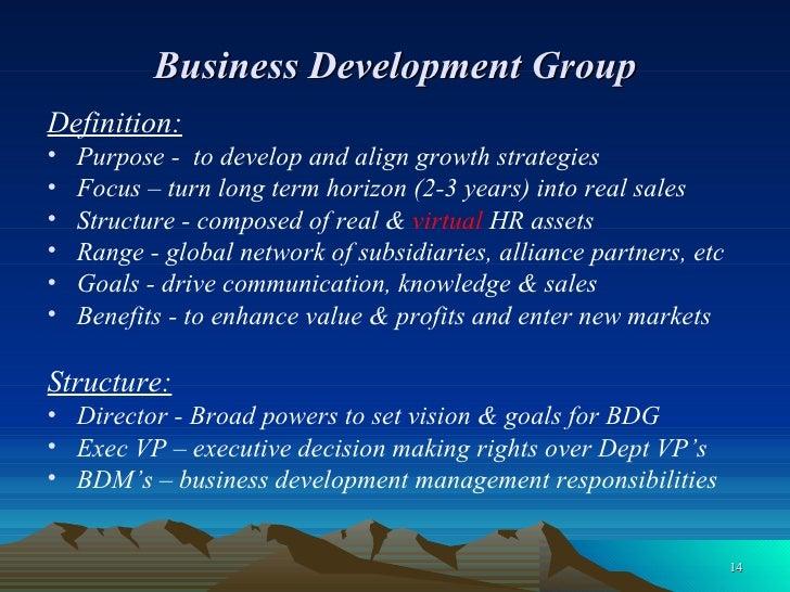 Business Development Group <ul><li>Definition: </li></ul><ul><li>Purpose -  to develop and align growth strategies </li></...