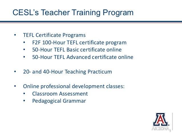 Best Practices in Online Teacher Training