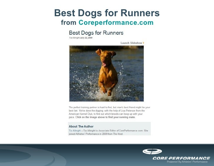 Best Dogs for Runners from  Coreperformance.com
