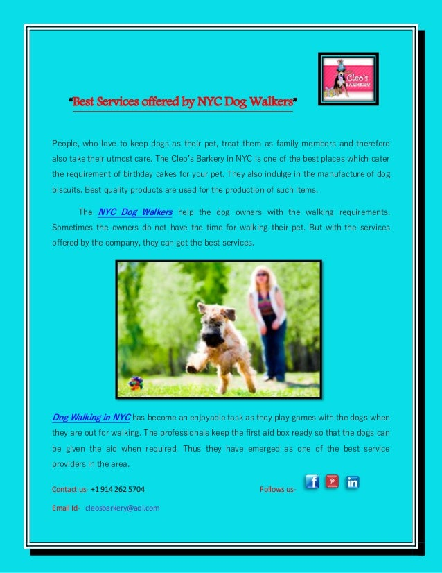 Miraculous Best Services Offered By Nyc Dog Walkers Funny Birthday Cards Online Inifodamsfinfo