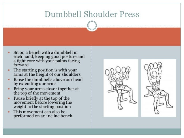 Best shoulder exercises for mass Slide 2