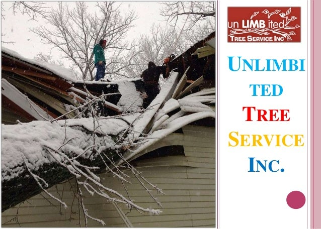 UNLIMBI TED TREE SERVICE INC.