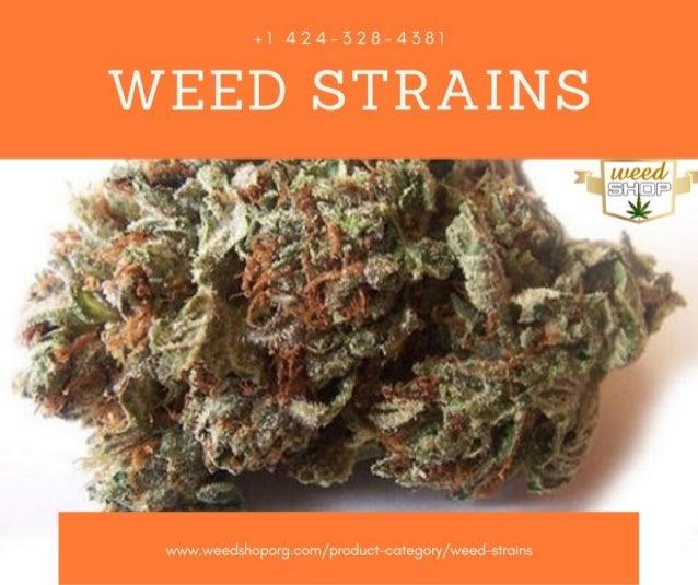 Best Weed Strains - Buy Weed Strains Online