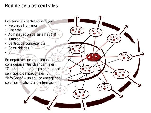Red de células centrales Los servicios centrales incluyen: • Recursos Humanos • Finanzas • Administración de sistemas (...