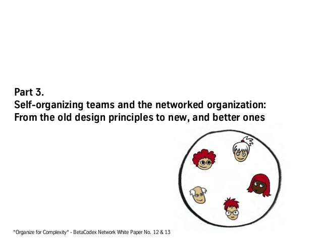 """Part 3. Self-organizing teams and the networked organization: From the old design principles to new, and better ones """"Orga..."""
