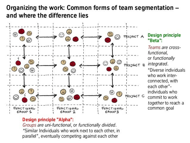 """Design principle """"Alpha"""": Groups are uni-functional, or functionally divided. """"Similar Individuals who work next to each o..."""