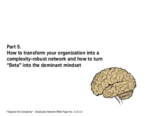 """Part 5. How to transform your organization into a complexity-robust network and how to turn """"Beta"""" into the dominant minds..."""