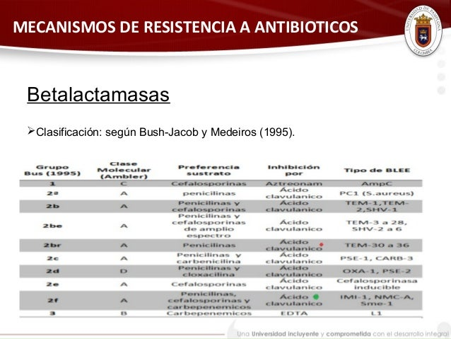 TIPOS DE BETALACTAMASAS DOWNLOAD
