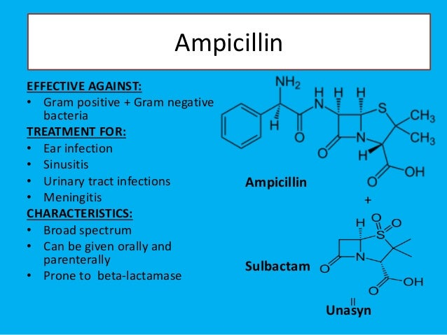 Amoxicillin and meningitis
