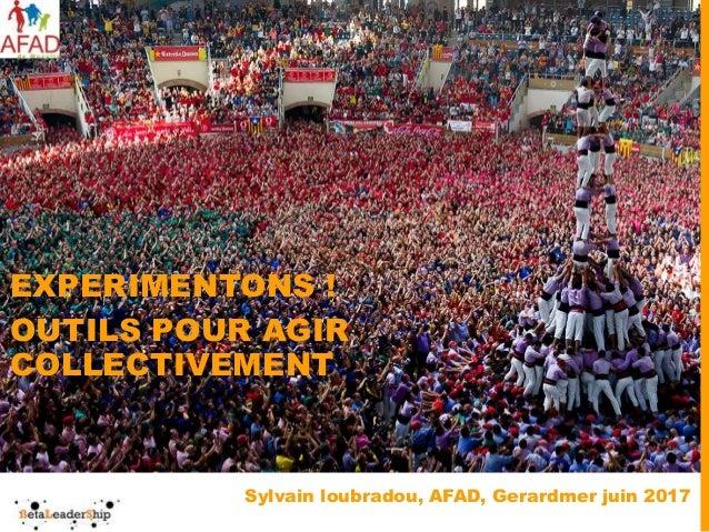 Sylvain loubradou, AFAD, Gerardmer juin 2017 EXPERIMENTONS ! OUTILS POUR AGIR COLLECTIVEMENT