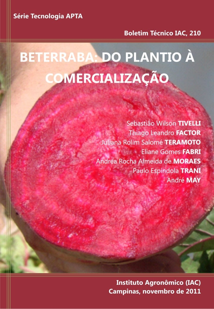 ISSN 1809-7936             BETERRABA: DO PLANTIO À                COMERCIALIZAÇÃO                                         ...
