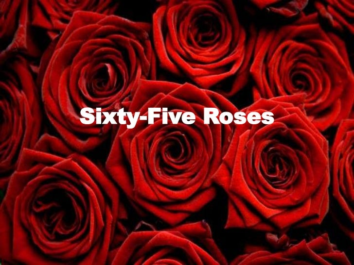 Sixty-Five Roses<br />