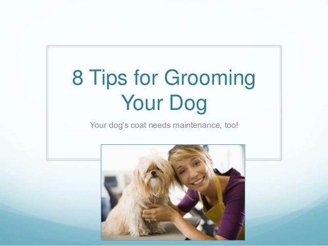 8 Tips for Grooming Your Dog Your dog's coat needs maintenance, too!