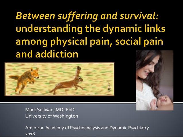Mark Sullivan, MD, PhD University ofWashington American Academy of Psychoanalysis and Dynamic Psychiatry 2018