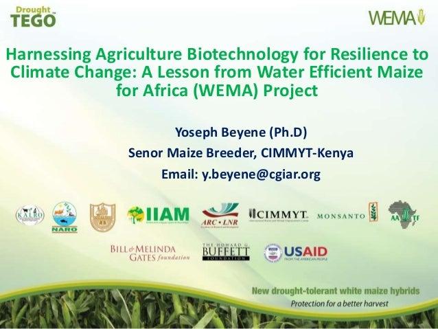 Agricultural biotechnology in kenya