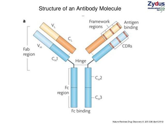 Nature Reviews Antibodies