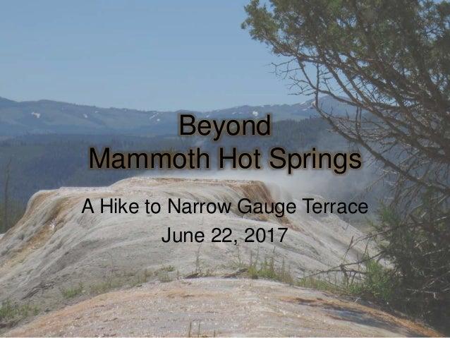 Beyond Mammoth Hot Springs A Hike to Narrow Gauge Terrace June 22, 2017