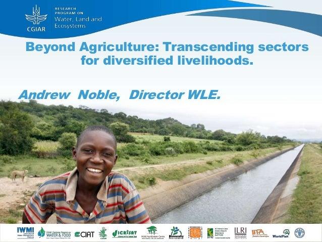 Beyond Agriculture: Transcending sectors for diversified livelihoods. Andrew Noble, Director WLE.